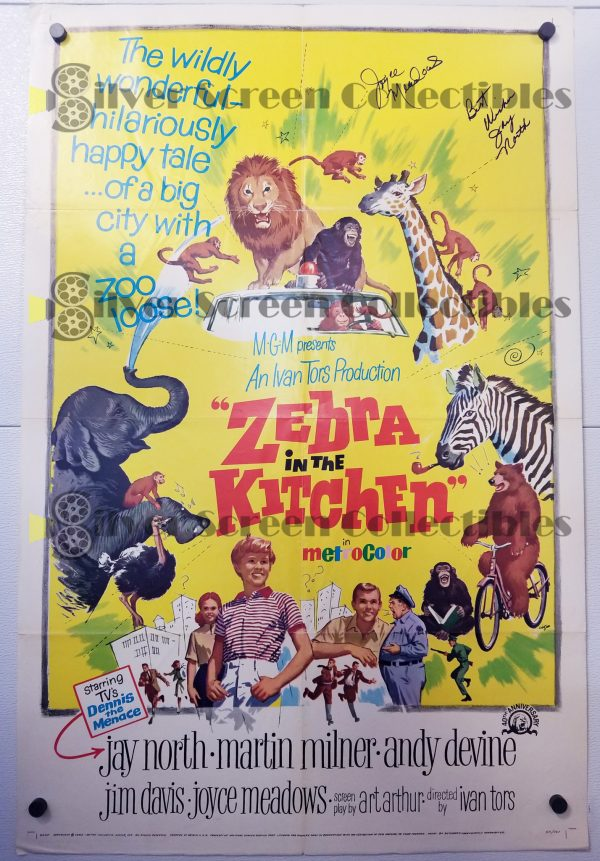 One Sheet Movie Poster from Zebra in the Kitchen