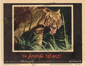 Lobby Card fromThe Animal World