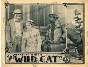 Lobby Card from The Wild Cat