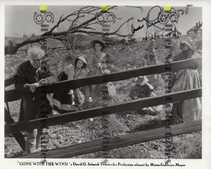 Photo Signed by Ann Rutherford